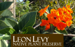 Leon Levy Preserve